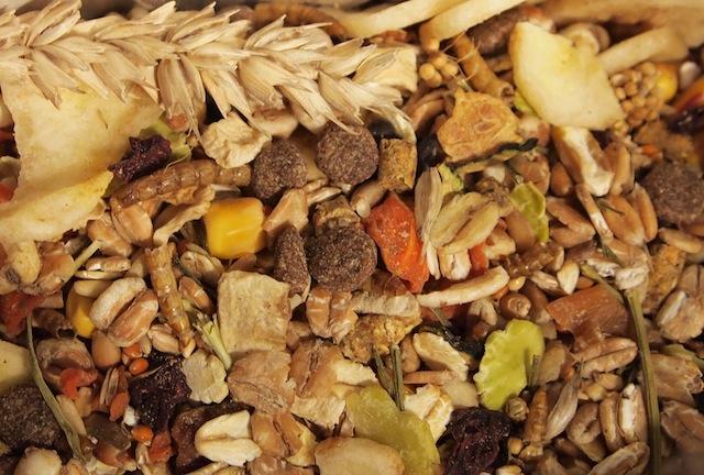 Pet Disaster Tip #17  – Rotate Food