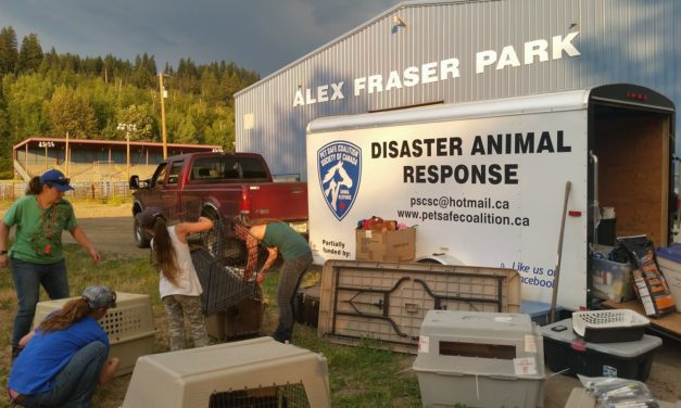 Disaster Training for Volunteers