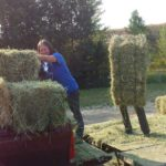 Hay Delivery!