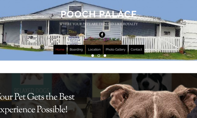 Thanks Pooch Palace!